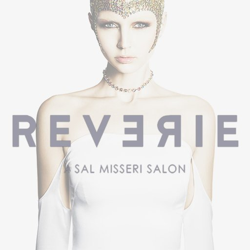 Reverie A Sal Misseri Salon