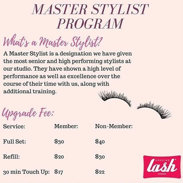 Master Stylist Program