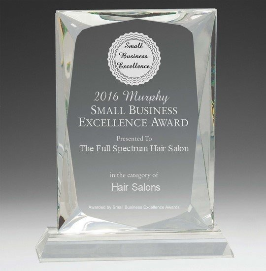 The Full Spectrum - Small business Excellence Award